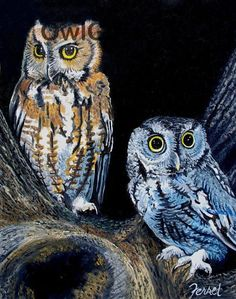 Owls Featured Images - Night Owls by Ferrel Cordle Owl Photos, Owl Pictures, Nocturne, Screech Owl, Owl Always Love You, Beautiful Owl, Night Owl, Art Night, Wise Owl