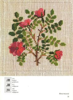 Gallery.ru / Фото #24 - Cross Stitch Pattern in Color -  45 colour photos .excellent for my cushion project