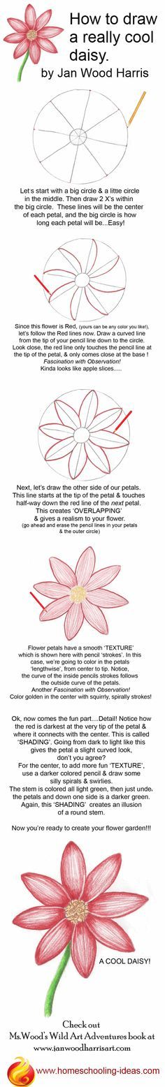 How to draw a cute daisy! Step by step, easy instructions. You could draw it as a hair accessorie even