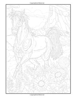 Dover Publications on Amazon / Creative Haven Horses Color by Number Coloring Book / George Toufexis