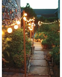 As the summer sun sets, any party can benefit from the magic of twinkle lights. Weave a few strands into your outdoor plants for instant mood lighting.