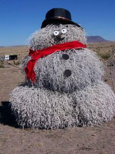 Don't have snow? Tired of the same old Christmas without any hope of a snowfall to build a snowman in site? Try the next best thing! A tumbleweed snowman can be one of the most fun holiday traditions Pretty Christmas Trees, Old Christmas, Christmas Ornaments, Christmas Ideas, Texas Tumbleweed, Holiday Fun, Holiday Decor, Holiday Ideas, Holiday Crafts