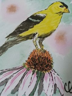 Gold Finch on Cone Flower Blank Card Watercolor by ColorsAndChords