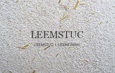 leemstuc-home.jpg