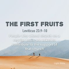 Light Bible Leviticus 23, Cain And Abel, Promised Land, Jesus Pictures, Always Remember, Quotes About God, Verses, Scriptures, Helping People