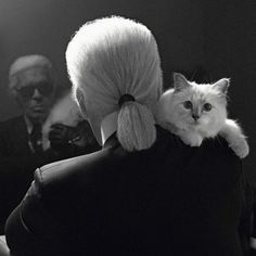 11 Karl Lagerfeld Quotes As Narrated By Choupette - Quotes - Racked National