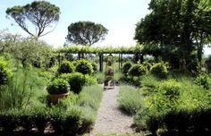 Giardino delle Erbe Aromatiche. Tenuta di San Giuseppe, sede dell'Almanacco Barbanera (Spello). #Umbria