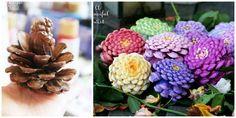 DIY Pine Cone Flori Tutorial: Cum sa faci Zinnia flori la Pine Con