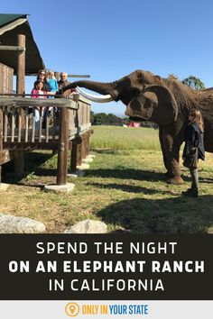 This safari-style bed and breakfast is also a ranch with unique, family-friendly animal tours, elephant encounters, tigers, and more. Rv Travel, Travel Info, Outdoor Travel, Places To Travel, Places To Visit, Life List, Rv Life, Vision Quest, Famous Beaches