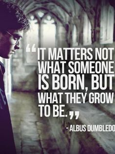 It matters not what someone is born, but what they grow to be. - Albus Dumbledore
