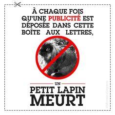 LES CARTONS: Photo