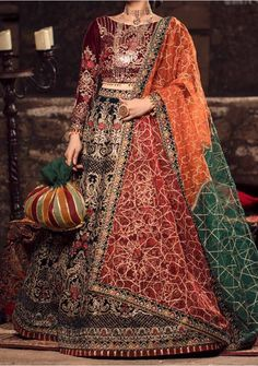 Pakistani Lehenga, Model Pictures, Embroidered Blouse, Dress Brands, Sari, Velvet, Luxury, Shopping, Clothes