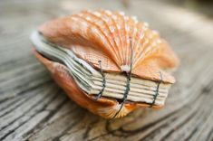 Amazing DIY Book Binding Ideas For Beginners - Craft Directory Sea Crafts, Nature Crafts, Book Crafts, Paper Crafts, Seashell Art, Seashell Crafts, Handmade Books, Book Binding, Book Making
