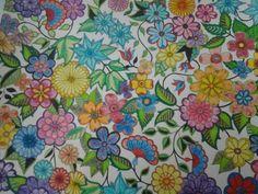 Secret Garden Johanna Basford caran d'Ache Fancolor regular pens