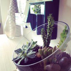Tips and Tricks for Using Plants in Modern Interior Design + Plant Care Guide Photo @designmilk @decorilla @maryannroun