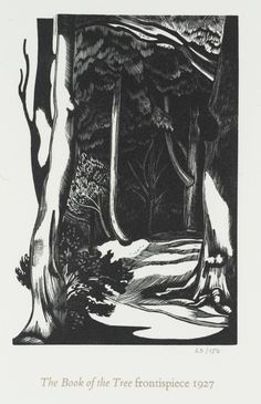 John Nash (1893‑1977) Frontispiece for the Book of the Tree Date c.1927-78 Wood engraving on paper 140 x 95 mm Collection Tate