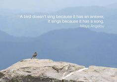 A bird doesn't sing because it has an answer, it sings because it has a song. -Maya Angelou via reflectionpond #Quotation #Maya_Angelou