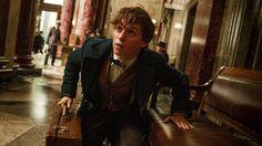 Salta la noticia: J.K. Rowling ha explicado que la nueva saga de películas del universo #HarryPotter tendrá 5 partes