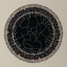 Stem (by Diana Lange) Motifs Organiques, Diana, Circle Art, Cartography, Land Art, Surface Pattern, Art Pictures, Geometry, Illustration Art