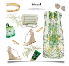 """""""palmboom"""" by mahora ❤ liked on Polyvore"""