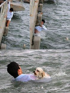This man love-for-all-animals- jumps over a bridge into a river to save dog
