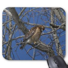 Hawk, Mousepad. Mouse Pad