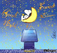 Good Night Greetings, Good Night Messages, Night Wishes, Good Night Quotes, Snoopy Images, Snoopy Pictures, Good Night Hug, Night Gif, Goodnight Snoopy