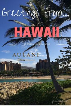99 Things to do on your next vacation to Disney Aulan in Hawaii.i   The JetSet Family
