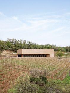 Marc Barani embeds ochre-coloured Les Davids winery in French vineyard. Spas, Barris, St Emilion, Organic Wine, Basement Plans, Minimalist Architecture, Architecture Design, Ground Floor Plan, Tasting Room