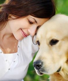 Essential Oils For Animals | HubPages