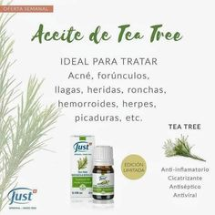 Wellness Products, Aromatherapy Oils, Tea Tree, Essential Oils, Childcare, Aromatherapy, Natural Remedies, Boyfriend