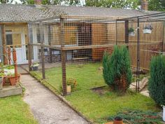 "cat enclosure: we used 2"" square wire mesh which is far more substantial than chicken wire and you can pull it really tight and straight; without it bending or going out of shape"