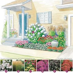 Garden Plan for a compact spot between the driveway and front door packs a punch with help from these easy-care, long-blooming plants.
