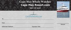 Cape May Whale Watcher 2016 Holiday Gift Certificates