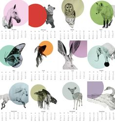 Starting off 2013 on the right paw with these critter calendars!
