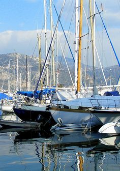 Cannes harbor ~