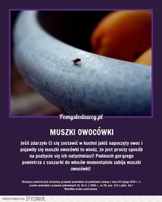 Pomysłodawcy.pl - Serwis bardziej kreatywny na Stylowi.pl Kitchen Organisation, In Case Of Emergency, Simple Life Hacks, Green Cleaning, Home Hacks, Good Advice, Good To Know, Home Remedies, Cleaning Hacks