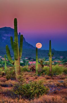 A picture perfect evening in the desert southwest as the sun sets and the moon rises from behind the mountains...
