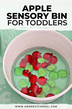 Looking for apple sensory bin ideas for toddlers, preschoolers, or kindergarten aged children? Well, they'll love this easy apple sensory bin with water. All that scooping and pouring is a great way to develop fine motor skills this fall. Sensory Activities For Autism, Infant Activities, Activities For Kids, Kindergarten Lesson Plans, Preschool Lessons, Toddler Preschool, Sensory Diet, Sensory Play, Infant Lesson Plans