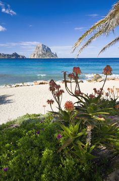 Cala d'Hort, #Ibiza, spectacular beach with the best view of the magnificent Es Vedra. www.ibiza-spotlight.com?aid=100