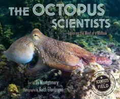 The Octopus Scientists : Exploring the Mind of a Mollusk by Sy Montgomery   This book looks at the work of renowned octopus scientist Jennifer Mather and a team of researchers on the island of Moorea, where they work to learn more about octopuses and their behavior.
