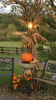 Halloween Lawn Decorations, Outside Fall Decorations, Autumn Garden, Fall Pictures, Fall Halloween, Halloween Costumes, Porch Decorating, Garden Art, Fall Porches