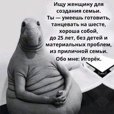 Женщины второго сорта и вечно недовольные Пупсики. Блоги. ЗаграNица - онлайн гид по Киеву