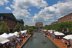 View of the Frederick Festival of the Arts. Photo by Kai Hagen Photography.