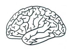 Disegno del cervello scuola primaria Kindergarten Activities, Classroom Activities, Art Attak, Human Body Unit, Kids Class, Female Doctor, Mandala Coloring Pages, Science, Dramatic Play