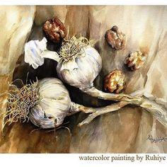 Garlic and Walnuts - Ruhiye Yalgin - watercolor