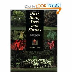 Dirr's Hardy Trees and Shrubs is a valuable reference book for North American gardeners.