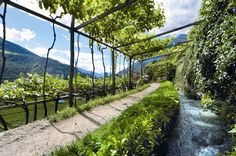Meran http://www.parentesirosa.it/articolo.asp?id=905:-passeggiate-all'aria-aperta-tra-sentieri-d'acqua-e-cascate#