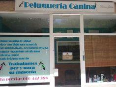 Ofertas especiales en Peluquería Canina en Móstoles