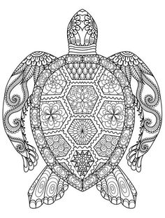 Adult Coloring Pages: Turtle